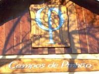 Campos de Pinhão