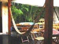 Bambu Brasil